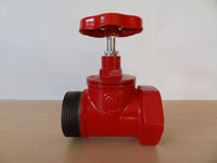 КПКП 50-1 чугунный  прямоточный муфта - цапка